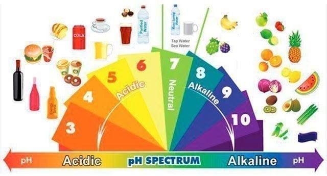 Tabla alimentos alcalinos y ácidos