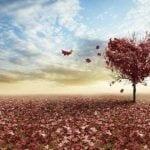 La Inteligencia Emocional y sus beneficios para la salud