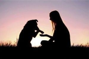 La muerte de nuestro perro, tan difícil como la partida de un familiar