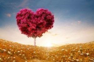 Un procedimiento para activar la inteligencia del corazón