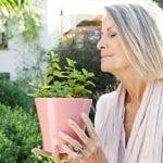 4 Hierbas que resguardan del alzheimer, depresión y ansiedad